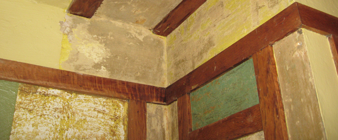 Paint and Plaster